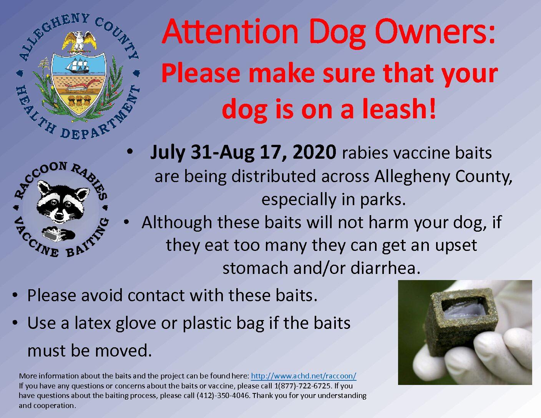 Rabies Vaccination Notice Park Flyer 2020
